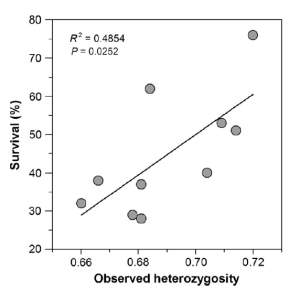 Figure 3: Offspring survival at high CO2 levels in relation to genetic diversity (in terms of observed heterozygosity).