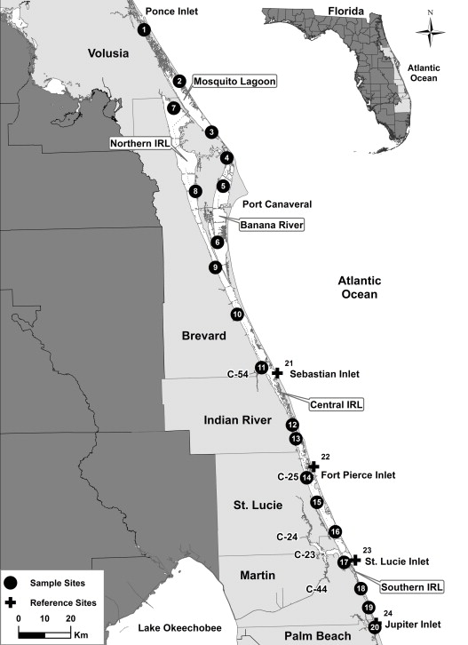 Sewage Pollution Running Amuck In Floridas Indian River Lagoon - Indian river lagoon map