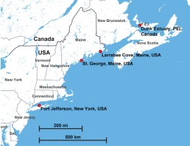 Figure 3: Locations sampled for cancerous clams  along the coast of North America.