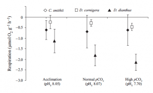 Fig. 8: This figure shows the respiration rates of the 3 coral species at each of the laboratory CO2 (pH) treatments. Symbols represent different species (see above).