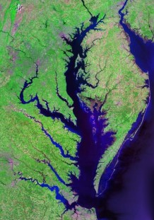 Chesapeake Bay. Credit: NASA Landsat.