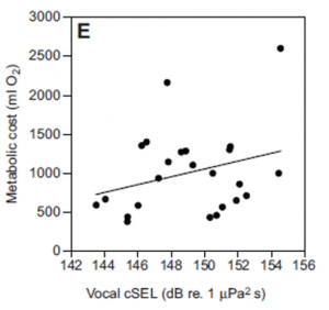 """The total metabolic cost of vocalization was calculated as the difference in oxygen consumption rates while vocalizing and while at rest. Metabolic cost increases with vocal effort (called """"cSEL"""" for """"cumulative sound exposure level"""" in the paper), suggesting louder or more frequent calling is more energetically expensive. Adapted from Holt et al., 2015."""