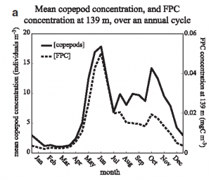 Figure 3: concentration of copepods at the surface and fecal pellet carbon at depth over an annual cycle. In the spring, a dramatic increase in copepod abundance corresponded with increased fecal pellet carbon at depth. However, the fall copepod boom did not increase fecal pellet carbon because it mostly contained smaller copepods whose pellets sank slowly and were decomposed before reaching the deep ocean.