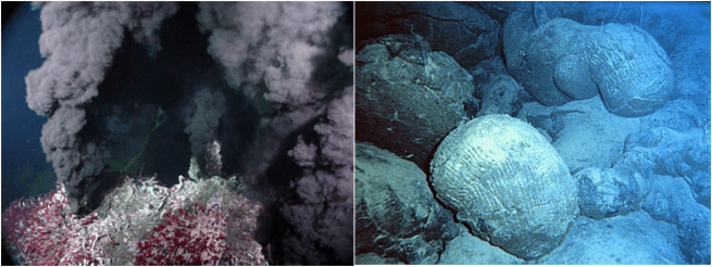 """Figure 1 – an example of the two habitats the researchers sampled: a hydrothermal vent community (right) and the basalt rock surrounding (left). The black """"smoke"""" comes from the high concentration of metals in the water, like iron and manganese, that precipitate out of the superheated water once they hit the cold ocean bottom water. The red and white tubes are tubeworms that live only on hydrothermal vents. (Source: Wikimedia Commons)"""