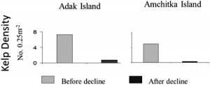 Fig. 2: Data from nearby Aleutian Islands showing the density of kelp forest before and after sea otter decline. The forests are significantly damaged after sea otters are removed.