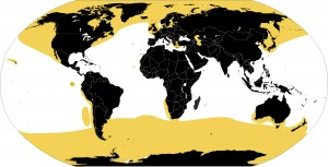 Figure 4: Pinniped Global Range (yellow shaded areas). Source: https://commons.wikimedia.org/wiki/File:Pinniped_range.jpg#/media/File:Pinniped_range.jpg