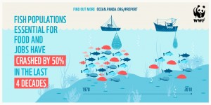 Figure 1: There are less fish in the sea then there were just a few decades ago. Image from World Wildlife Fund