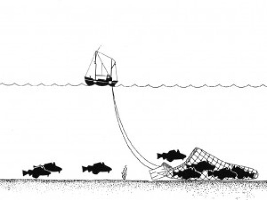 Fig 4: Diagram of a trawling tow. (Source: Public Commons)