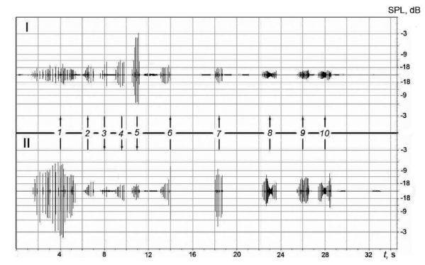 Fig. 6: An example of what the sound recordings look like to researchers. I and II represent the different recording devices. Along the middle of the figure you'll see arrows pointing up or down. The direction of the arrow indicates which dolphin is communicating. You can see that there are no overlaps in sounds produced by the two dolphins and distinct pauses before one chimes in.