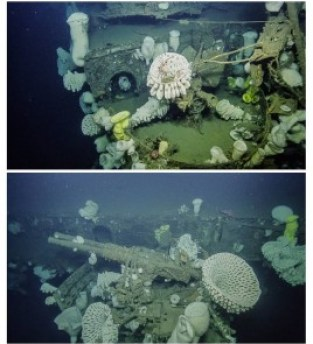 Large glass sponges cover the 22 mm anti-aircraft gun deck (top) and the 40 mm anti-aircraft gun (bottom). Images from nautiluslive.org