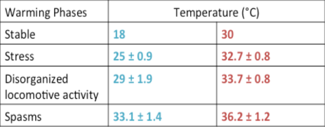 Table 1 – The range at which both treatments of seahorses exhibited the behavior patterns for temperature increases. Seahorses acclimated to colder temperatures (18°C, blue) could handle 18-33°C and seahorses acclimated to warmer temperatures (30°C, red) could handle 30-36°C. Source: Mascaró et al. 2016.