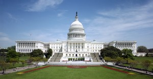 Congress can be a confusing place. This brief guide will help you become better informed and more active. Credit: wikicommons.