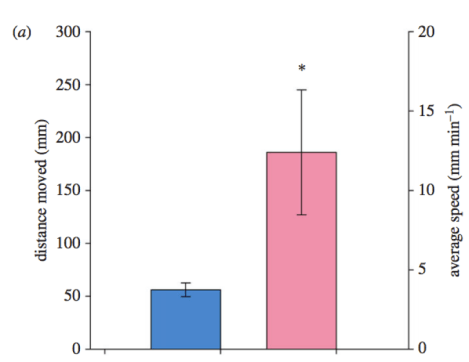 Figure 2: Graph showing the increase in distance (left y-axis) and average speed (right y-axis) from snails in control (blue) to snails in more acidic (pink) water.  Control snails traveled less distance at a slower speed than their high CO2 cousins. Source: Watson et al. (2017)