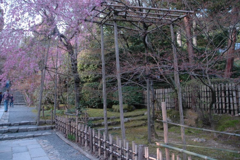 japan-reise_urlaub_blog_oceanblue-style.jpg