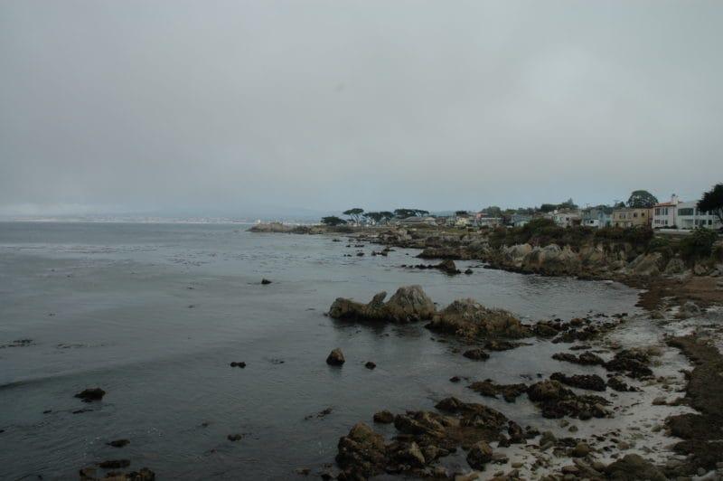 roadtrip-westkueste_usa_kalifornien_oceanblue-style_cypress-tree_monterey
