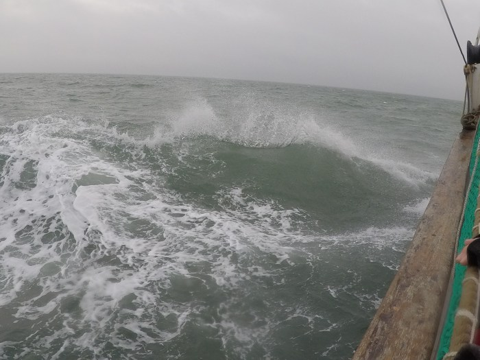 Waves make the rules at the ocean
