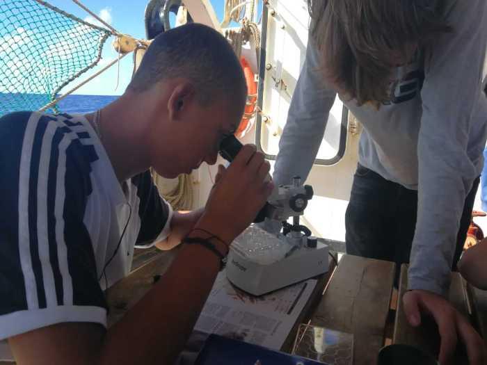 Kilian beim Mikroskopieren