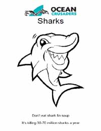 Shark Coloring Sheet
