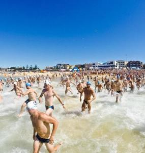 Ocean Swimming Is Riding A Wave Of Popularity