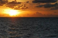 Ocean Great Ideas