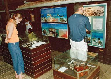 Educational Activities/ Fernando de Noronha Archipelago National Marine Park, Brazil / Ocean Great Ideas