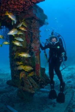 Dr. Sylvia Earle at the Aquarius Habitat / Ocean Great Ideas
