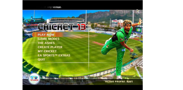 Ashes Cricket 2013 Free Download