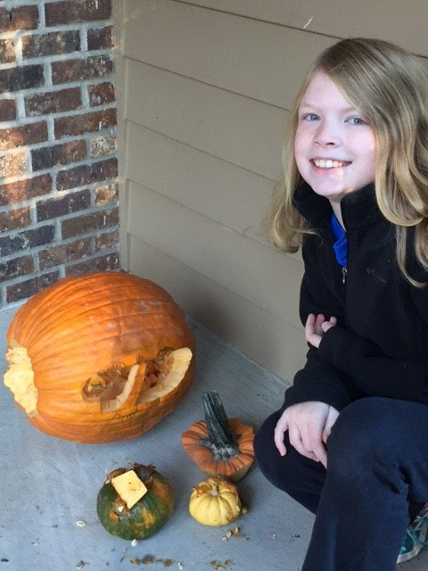 Derilissus lombardii pumpkin