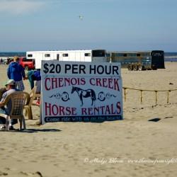 Chenois Rides