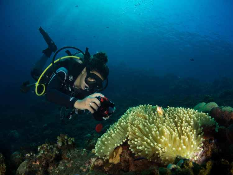 Underwater photographer with compact camera