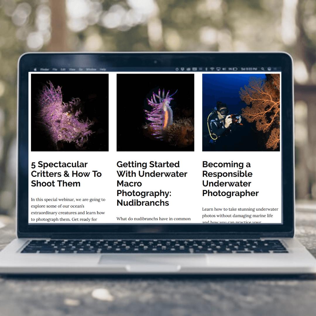 Upcoming-webinars