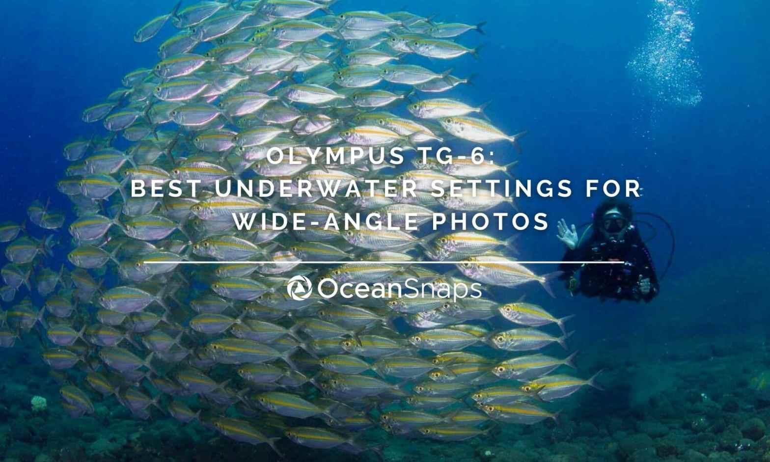 Olympus TG6 underwater settings wide-angle
