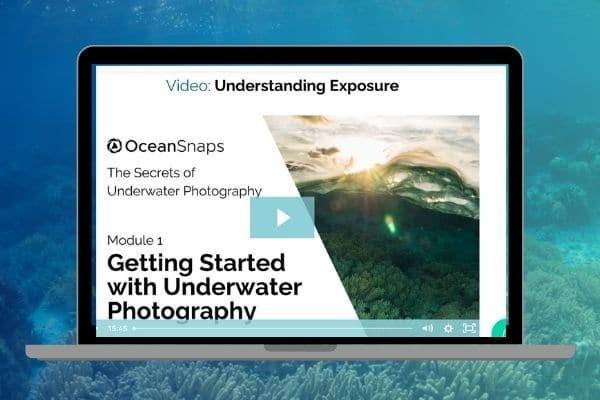Underwater Photography Webinar_Manual mode