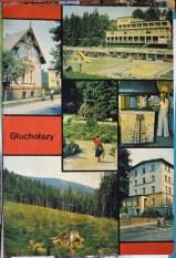 glucholzay-p