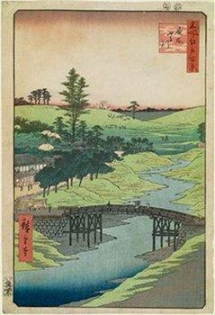 hirohurukawa-1