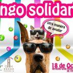 Bingo Solidario en el Arrecife Gran Hotel & Spa (Sábado, 19 de octubre)
