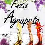 Fiestas de Aguapata El Islote 2017 (Del 30 de septiembre al 08 de octubre)