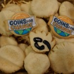 Club Penguin Cookies for Charity