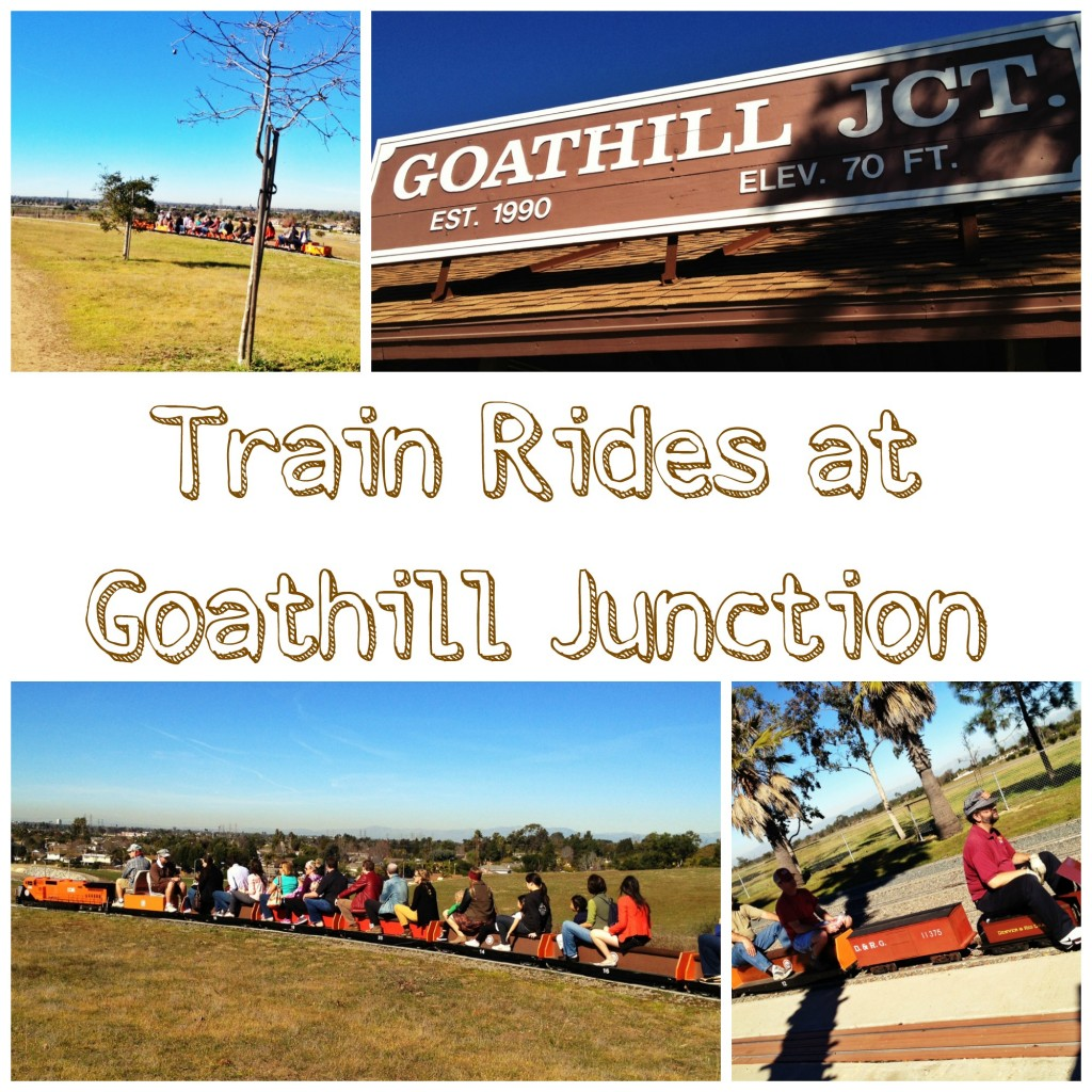 Train Rides at Goathill Junction