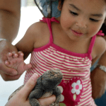"""Be """"Wild at Heart"""" at the OC Zoo"""