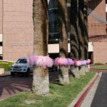 Have You Been Tutu Bombed?