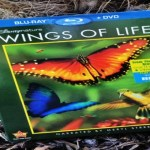 Earth Day Wings of Life Prize Pack (Giveaway)