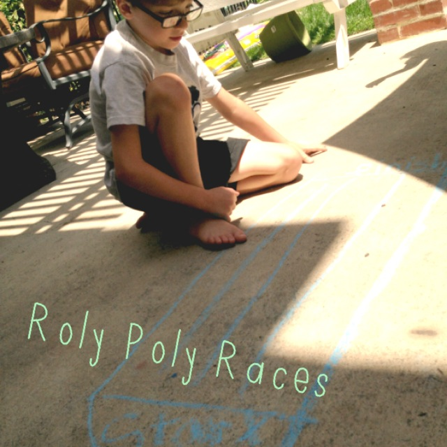Roly Poly Races