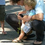 Tips to Foster Effective Communication in your Family
