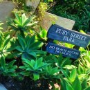 Guide to Ruby Street Park in Laguna Beach