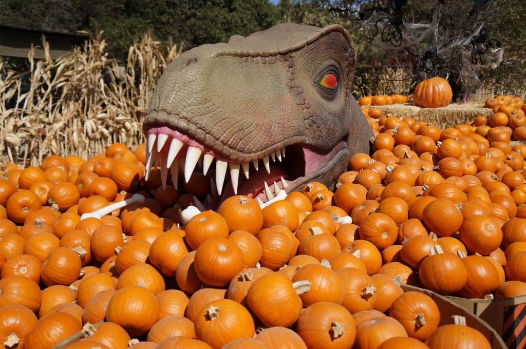 Dinosaur eating pumpkins