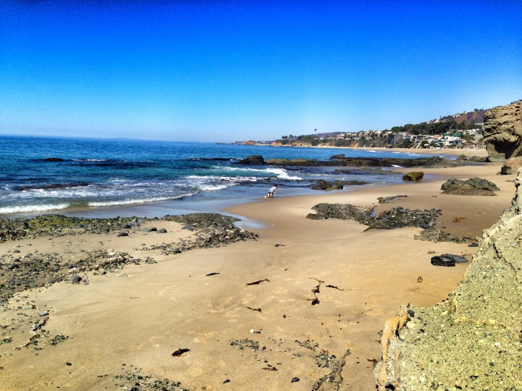 Camel Point Beach Laguna Beach