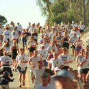 2013 Turkey Trot Races in Orange County