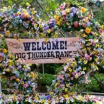 Guide to Visiting  the Disneyland Springtime Roundup