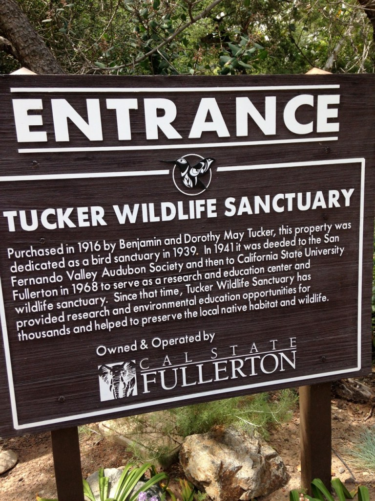 tucker-wildlife-sanctuary-17